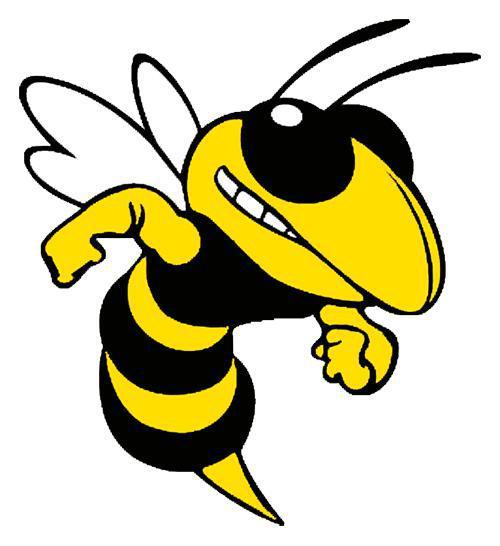 BeeWise Security Essex logo