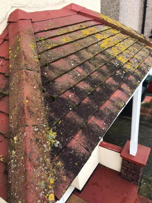 Image 16 - Porch roof before cleaning