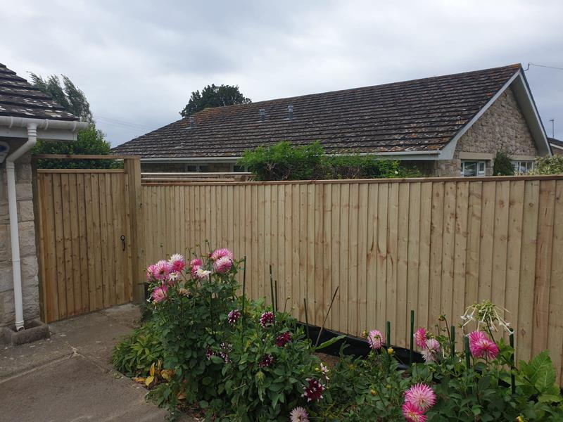 Image 120 - Closeboard fencing with matching gate