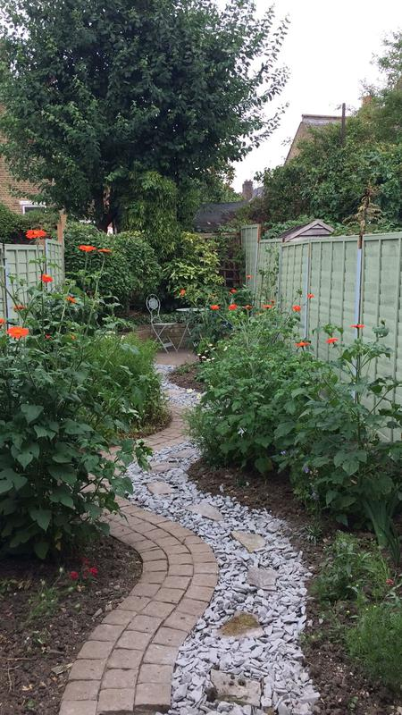 Image 7 - Small Garden Project Earlsfield Finished