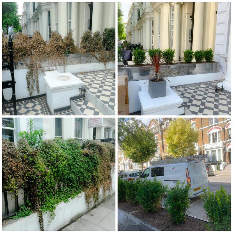 Image 16 - Garden Maintenance
