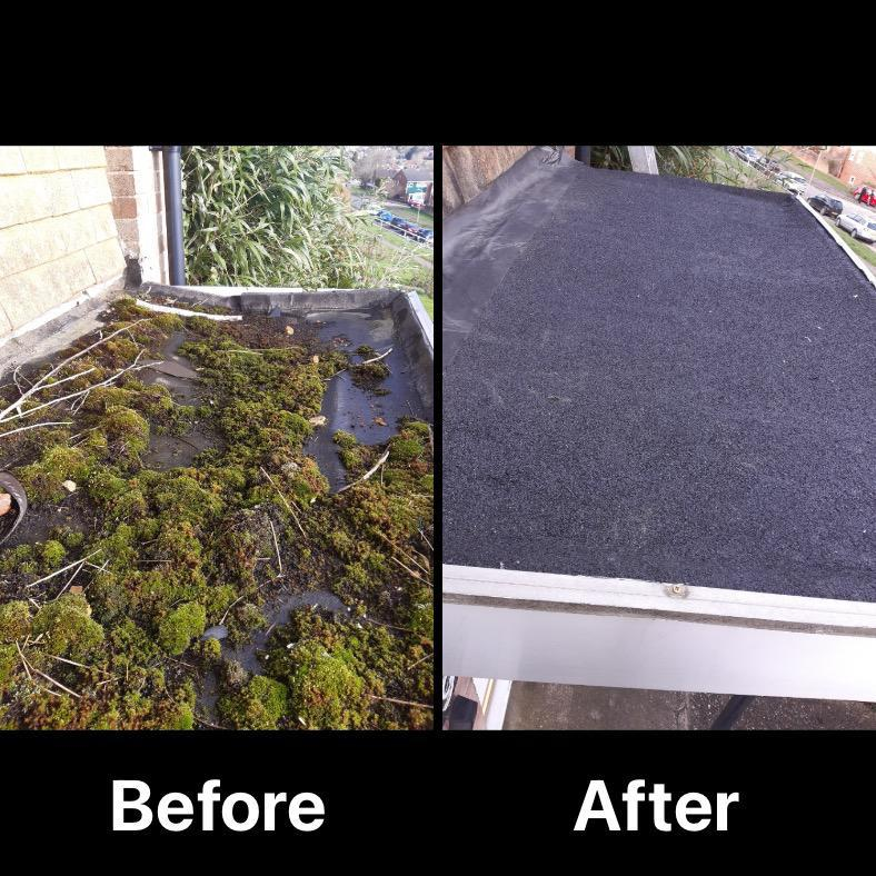 Image 5 - New porch roof