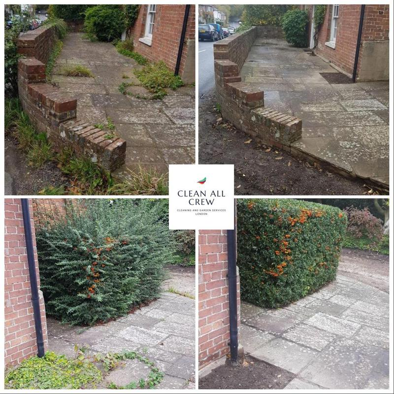 Image 4 - Garden Maintenance, tidy up