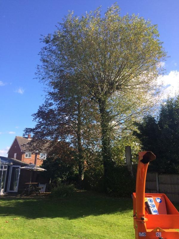 Image 62 - Before in Corringham