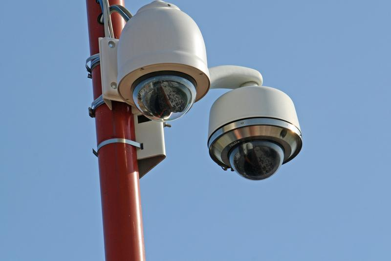 Image 3 - Post mounted dome cameras