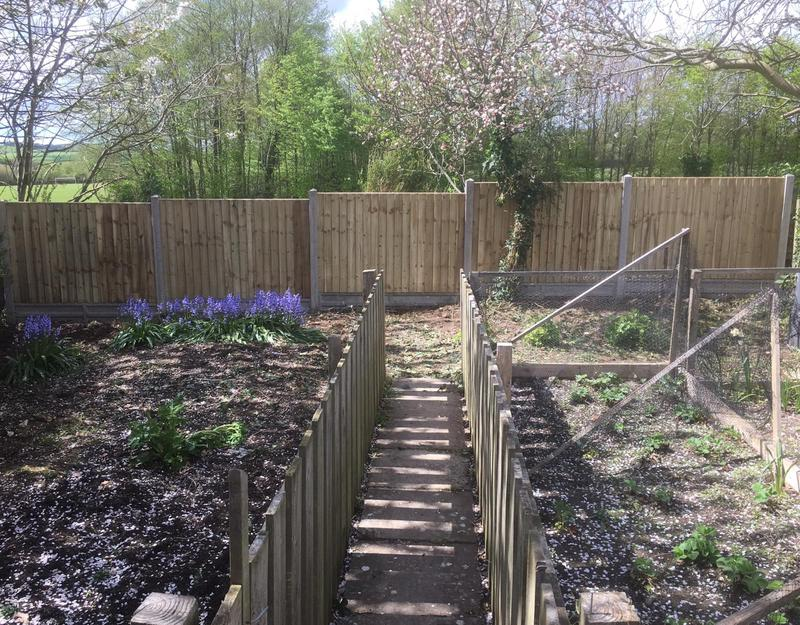 Image 129 - Closeboard panels with concrete posts and gravel boards