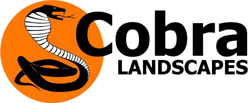 Cobra Landscapes inc Cobra Cleaning logo