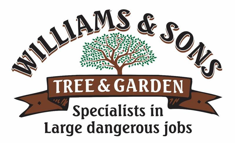 Williams and Sons logo