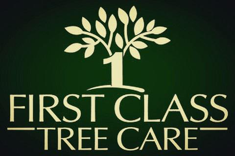 First Class Tree Care logo