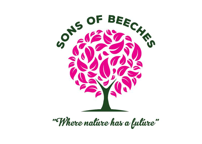 Sons of Beeches Trees & Fencing logo