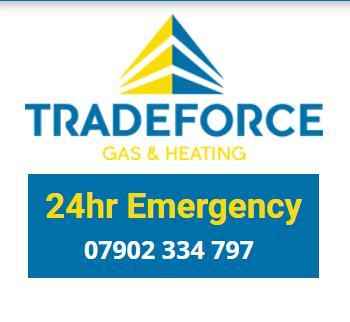 Tradeforce Gas & Heating Ltd logo