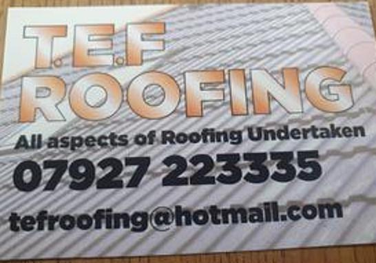 TEF Roofing logo