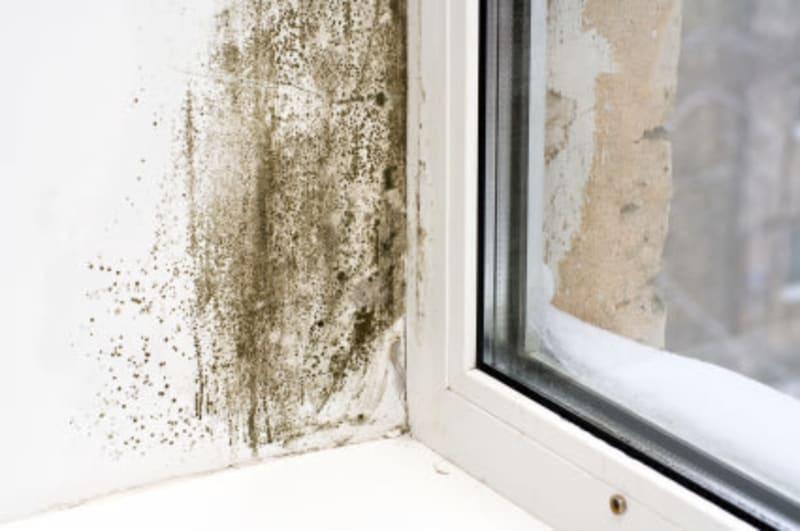 Image 6 - Condensation control