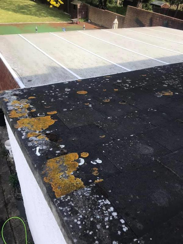 Image 12 - Roof before cleaning