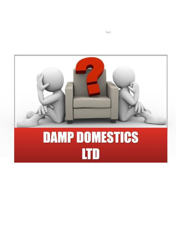 Damp Domestics Ltd logo