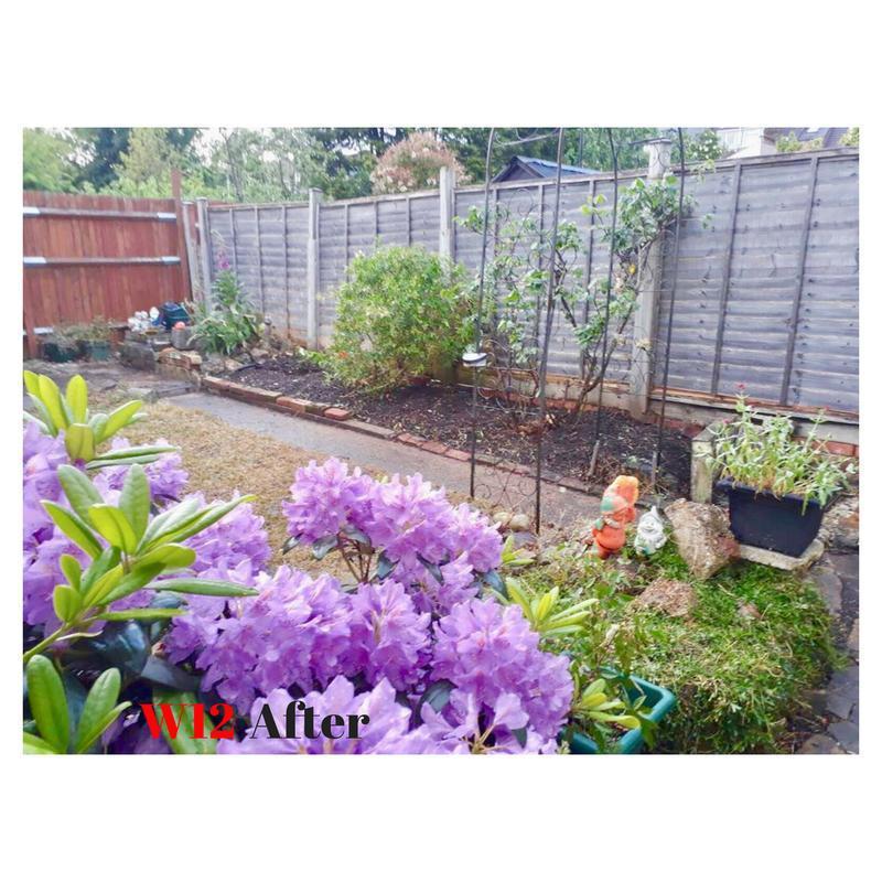 Image 9 - Gardening
