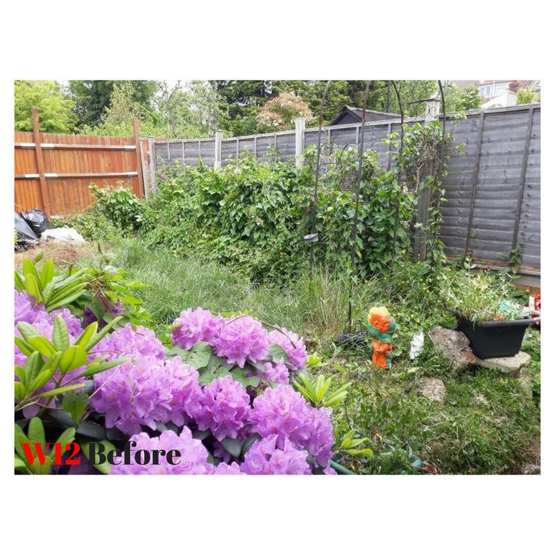 Image 12 - Gardening