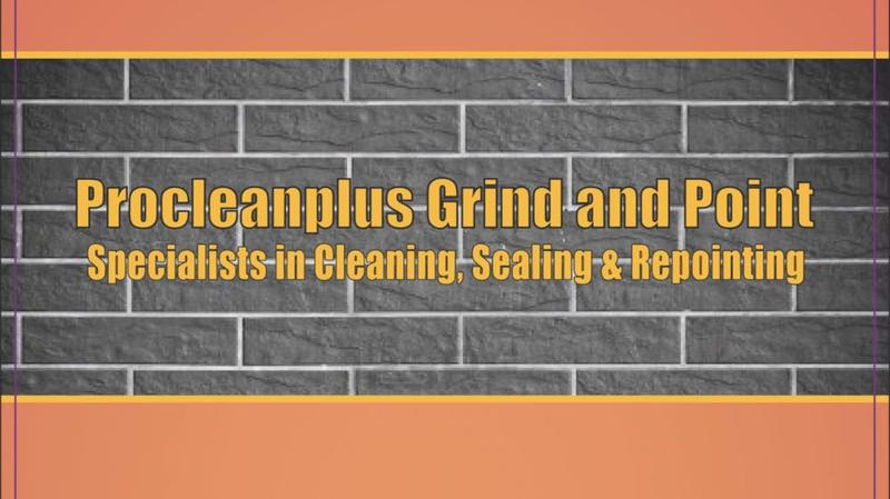Procleanplus Grind and Point  logo