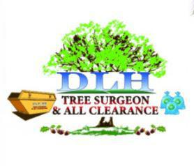 DLH Tree Surgeon logo