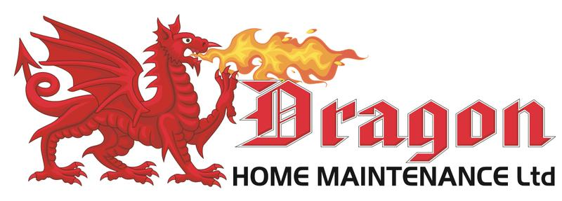Dragon Home Maintenance Ltd logo