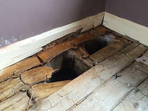 Image 15 - Dry rot survey Yorkshire