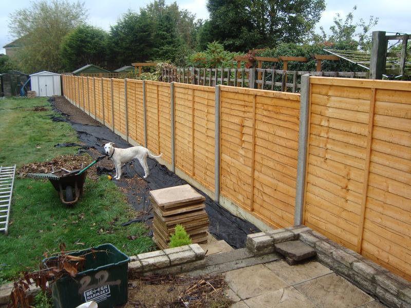 Image 12 - new fencing