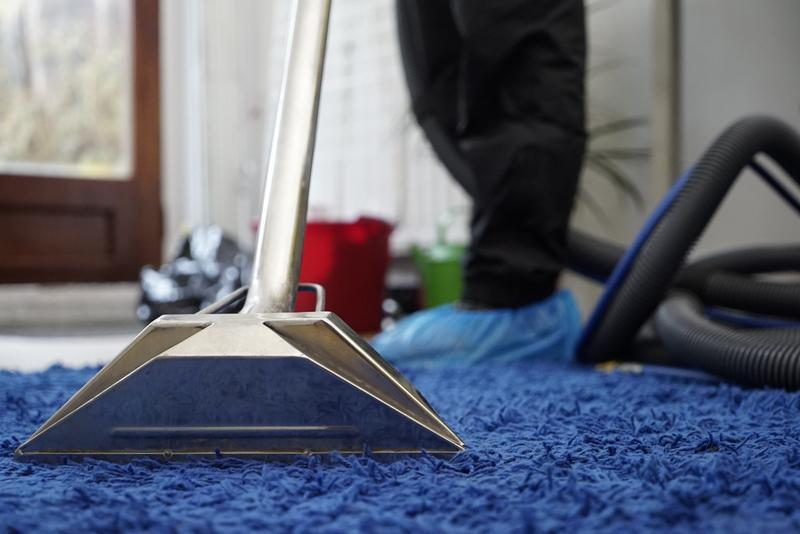 Image 6 - Carpet Cleaning London