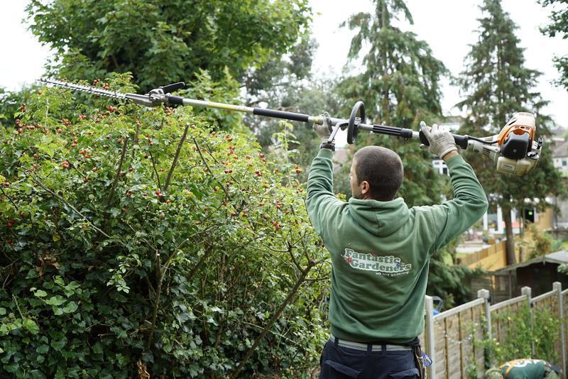 Image 4 - Gardening & Landscaping Services London
