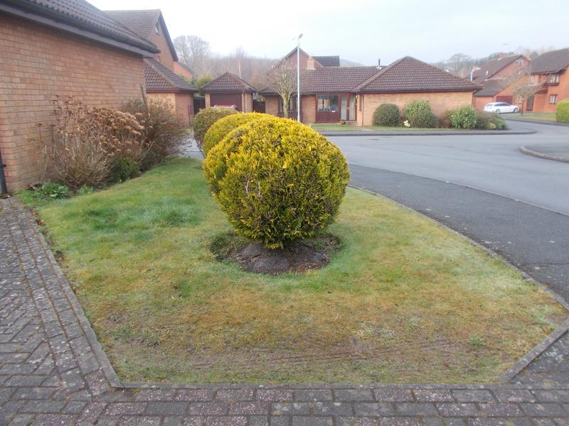 Image 37 - front garden before turfing and driveway extension