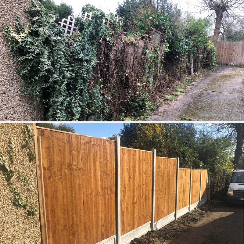 Image 9 - Fencing....before & after