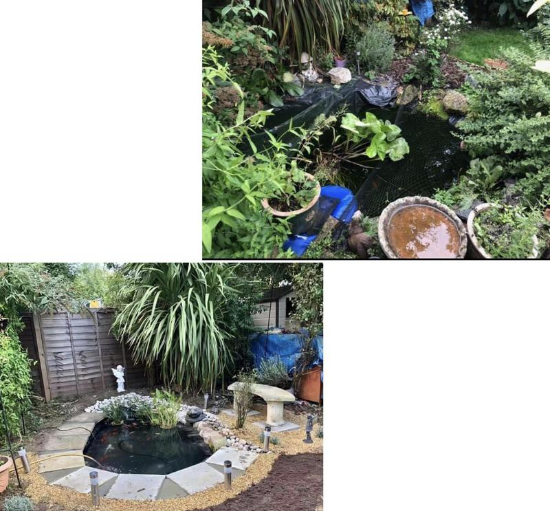 Image 7 - 41- Before and after pond refurbishment