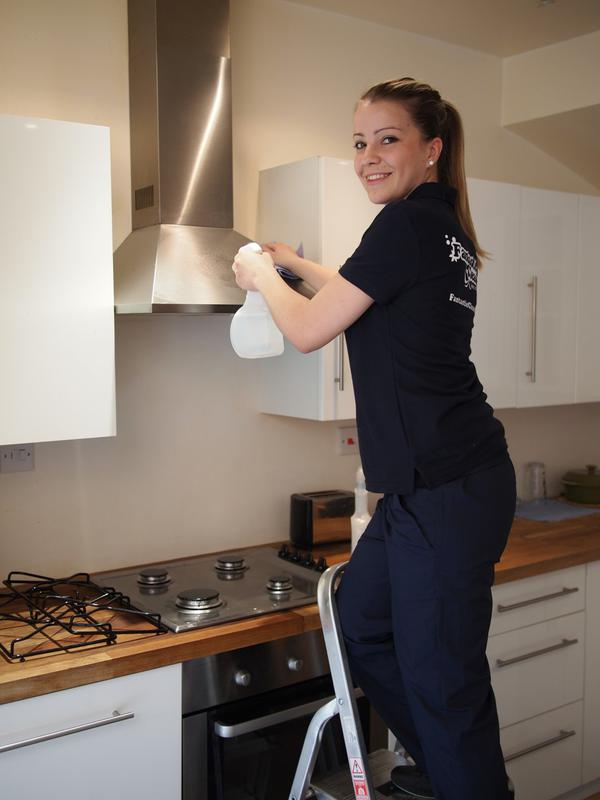 Image 8 - Kitchen appliance cleaning