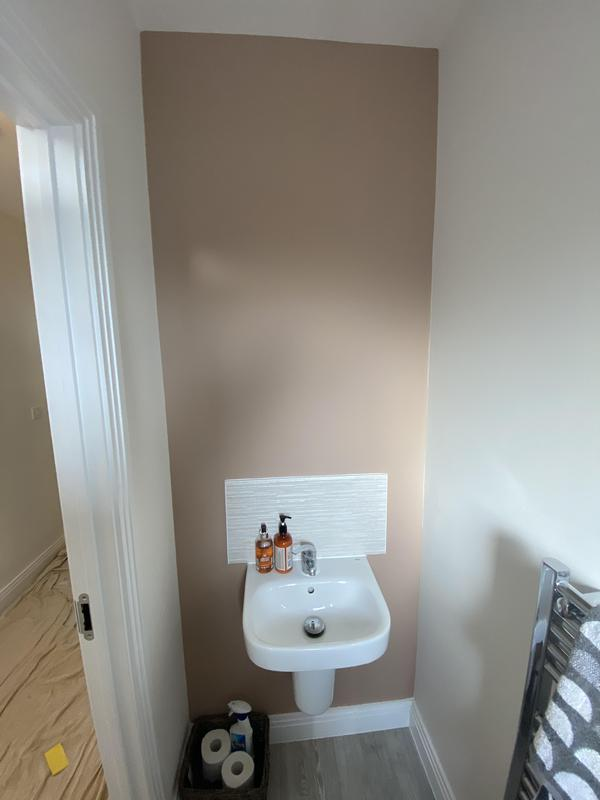 Image 3 - Freshening up toilet including feature wall 👍