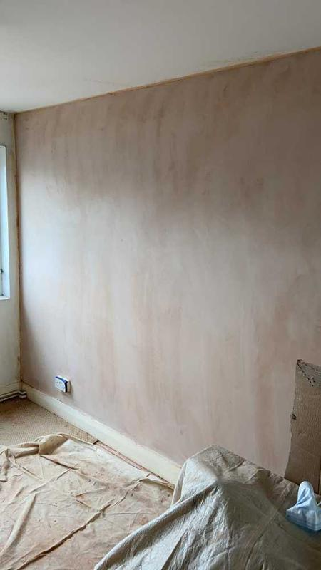 Image 5 - Newly plastered wall, set to dry and ready for painting.
