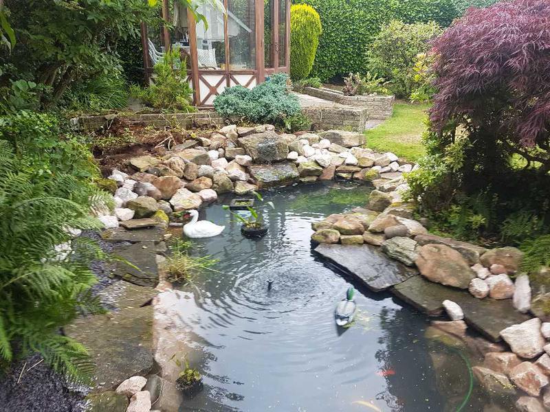 Image 51 - Wild life pond