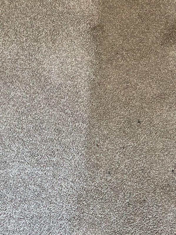 Image 18 - Before & After of a recent carpet clean.