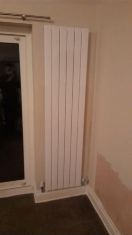Image 18 - horizontal radiator removed and vertical fitted
