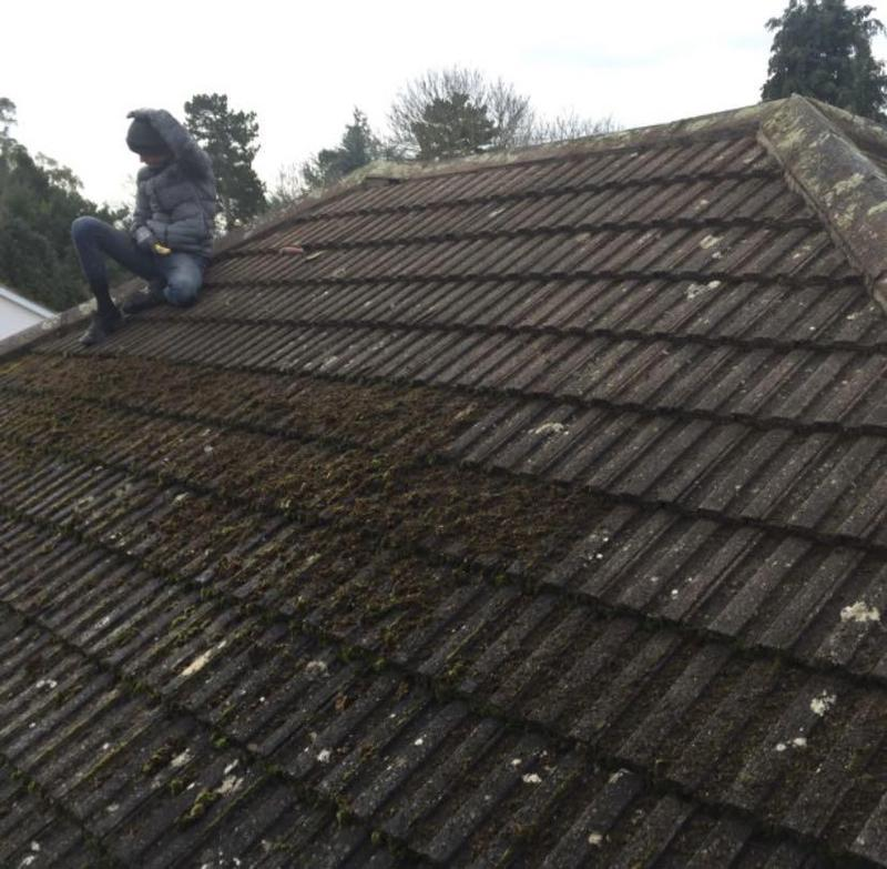 Image 7 - Roof Being De-mossed (DURING)