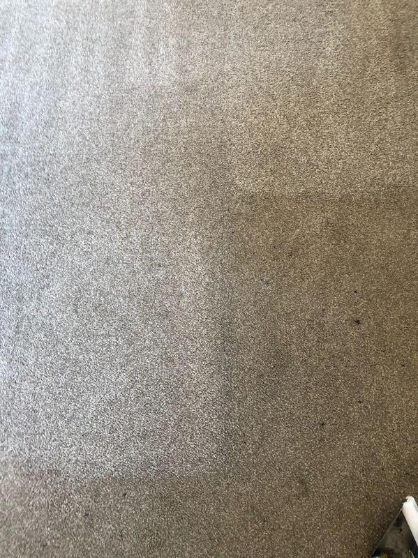 Image 17 - Before & After images of a recent carpet clean.