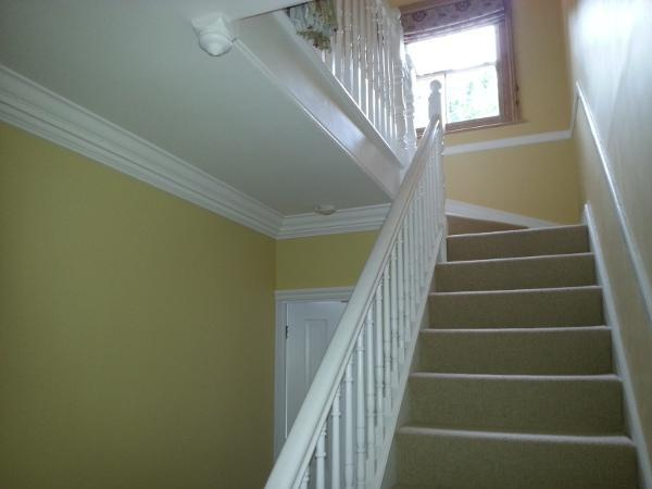 Image 14 - Paint Striping and Redecoration After