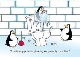 Image 1 - a cold bum ha !