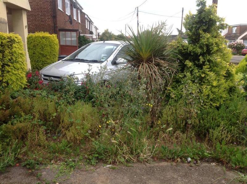 Image 2 - Garden clearance Ashingdon before