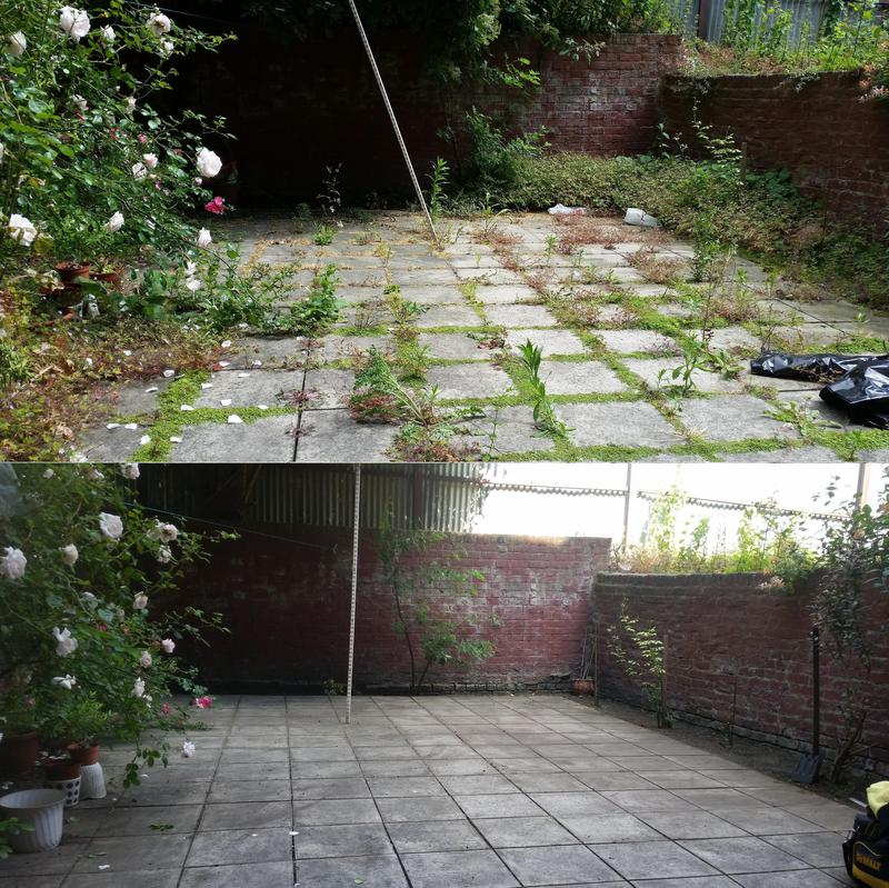Image 8 - Garden Clearance