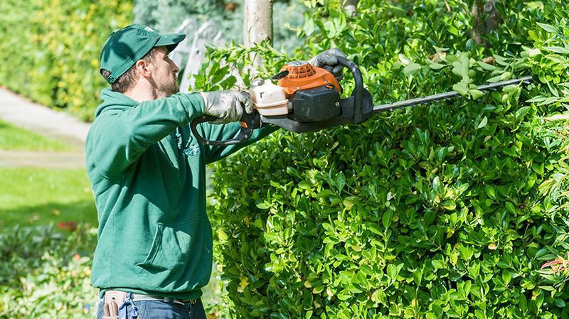 Image 14 - Gardening & Landscaping Services London
