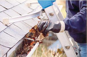 Image 3 - Gutter Cleaning by ladder access