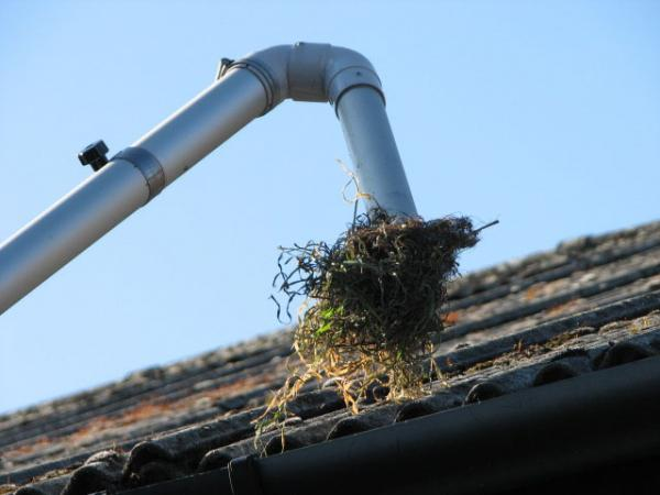 Image 4 - Gutter Cleaning by machine