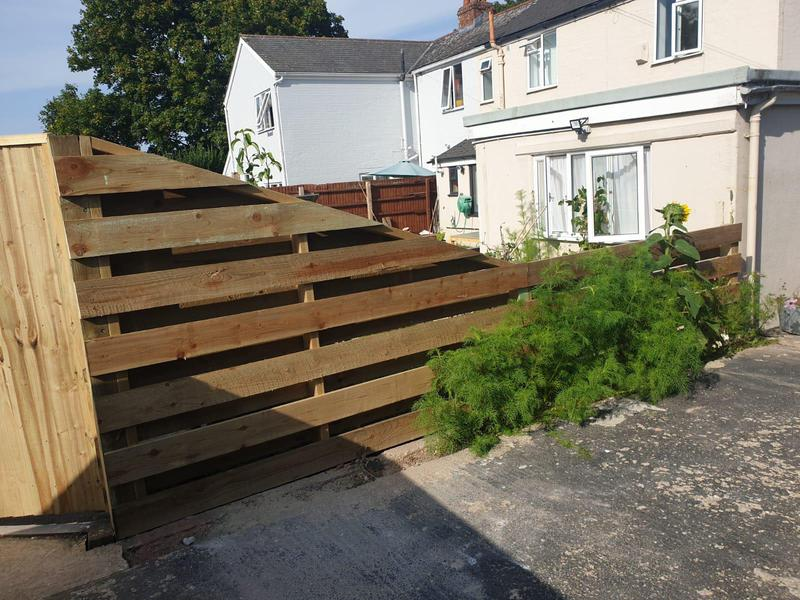 Image 36 - Hit and miss style fencing, Dorchester