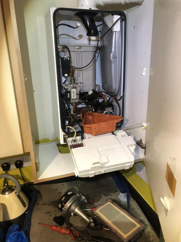 Image 1 - Ideal boiler repair and servicing. Burner, fan, condense trap and electrodes removed and cleaned