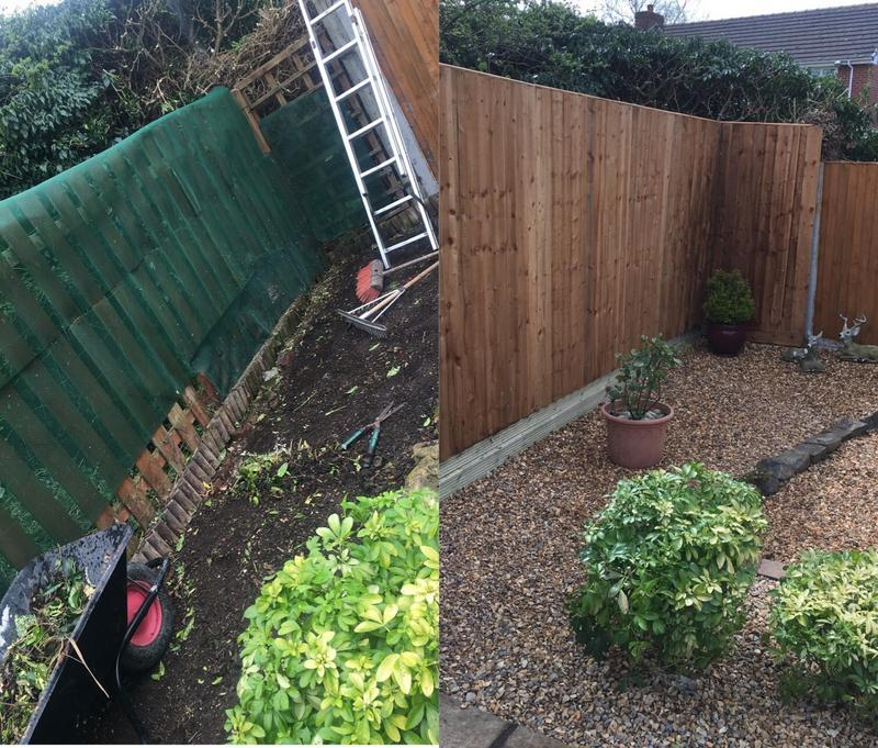 Image 4 - Todays before and after.