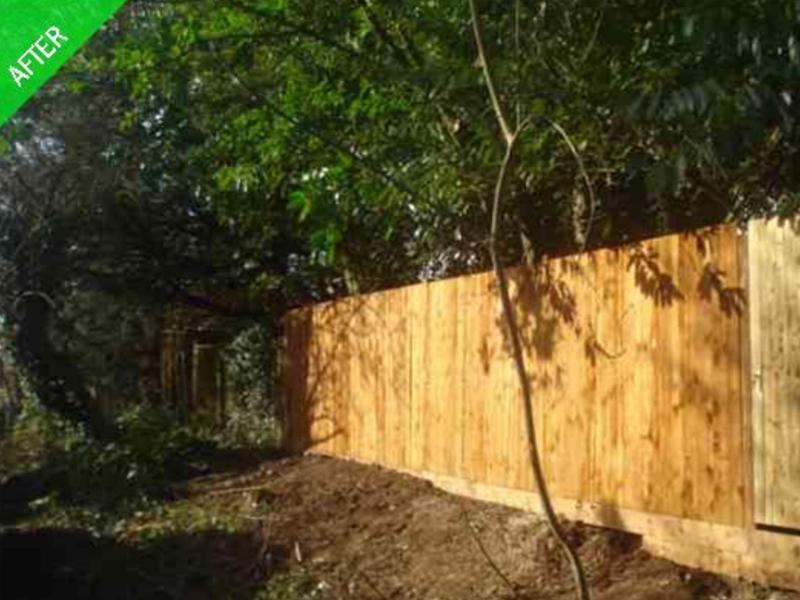Image 5 - Fencing